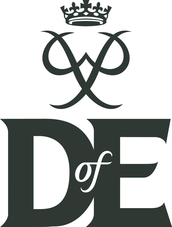 DofE logo gunmetal no words